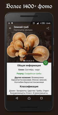 Справочник грибника 4.4
