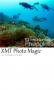 Скачать XMT PhotoMagic