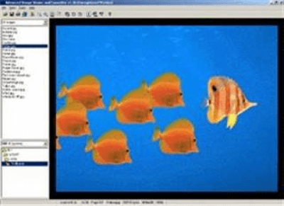 Advanced Image Viewer and Converter 1.6