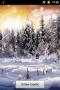 Скачать Живые Обои Зимний Лес Снежинки