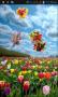 Скачать Тюльпаны