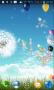 Скачать Balloons live