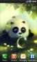 Скачать Panda Dumpling Lite