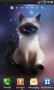 Скачать Siamese Cat Lite