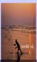 Скачать IncredibleIndia