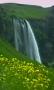 Скачать Flowers Waterfall