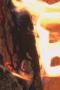 Скачать Fireplace Closeup