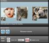 Скачать Free GIF Slideshow Maker