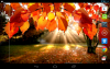 Скачать Осенний свет