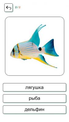 Учим и играем Русский + 2.7