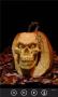 Скачать Pumpkin Carvings FREE