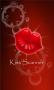 Скачать Kiss Scanner