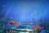 Скачать Заставка (скринсейвер) Подводный мир