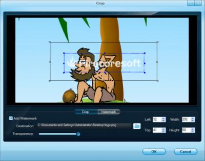 Firecoresoft SWF Converter 1.1
