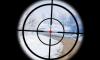Скачать Gun Cam Simulator