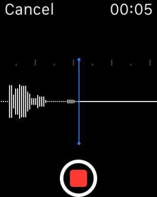 Audio Memos Pro 4.8.2