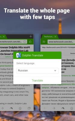 Dolphin Translate 1.10