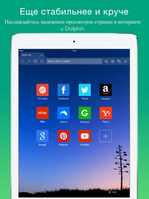 Dolphin браузер для iPad 9.24.4