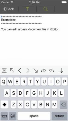 iEditor Pro 3.10