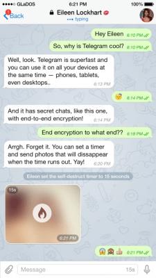 Telegram Messenger 5.0.8