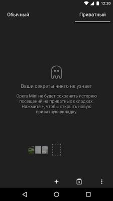 Браузер Opera Mini 37.0.2254.132113