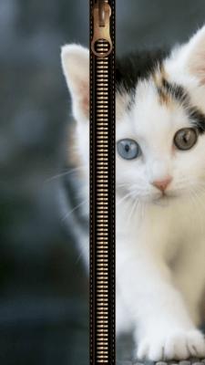 Cat Zipper Screen Lock 3.5