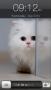 Скачать Cat Screen Lock