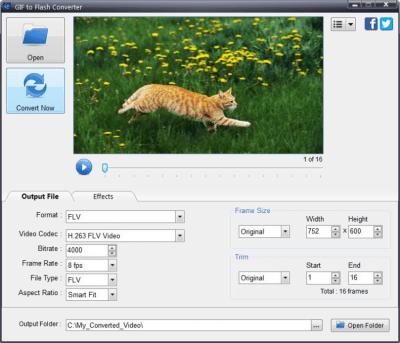 GIF to Flash Converter 4.2