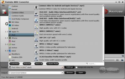 Pavtube MKV Converter 4.9.0.0