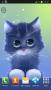 Скачать Radioactive Cat