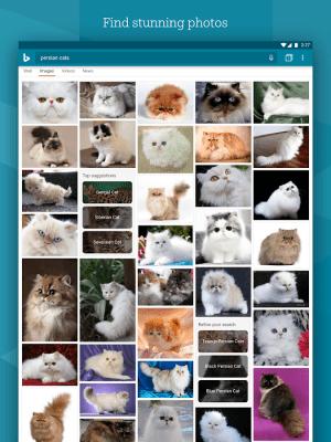 Microsoft Bing Search 9.1.26248205