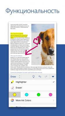 Microsoft Word 2.18
