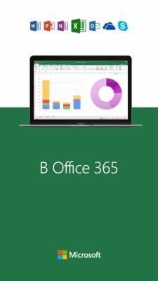 Microsoft Excel 2.18