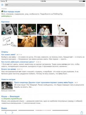 Поиск.Mail.Ru 2.8