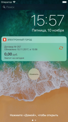 Электронный город 2.12.8