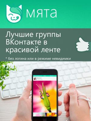 Мята для ВК 2.9.8