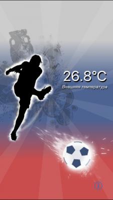 Термометр 73