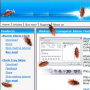Скачать Cockroach on Desktop