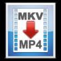 Скачать MKV2MP4