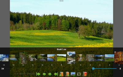 Perfect Viewer 4.3.1.1