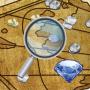 Скачать Digger's Map - Где найти золото - Природные Ресурсы и Минералы