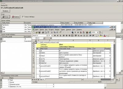 Документирование структуры БД MS Access 2011
