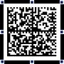 Скачать DataMatrix-ActiveX 2.1