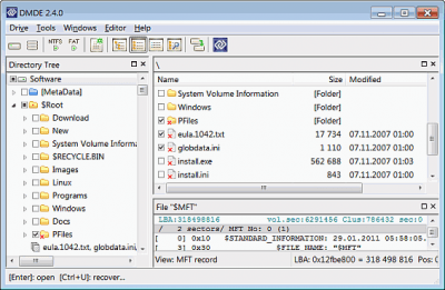 DMDE (DM Disk Editor and Data Recovery) 3.4.4.740