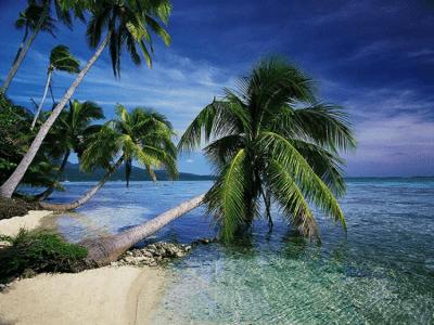 dArt Tropical Islands v1.0