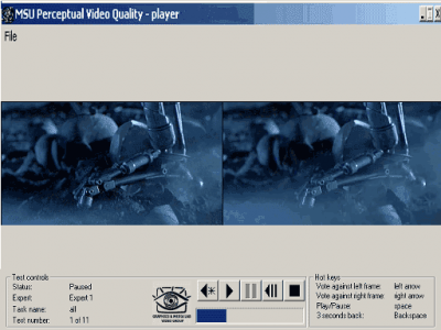 MSU Perceptual Video Quality Tool 0.9