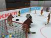 Скачать Медведи-хоккеисты 2.2b