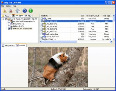 Easy File Undelete 1.0