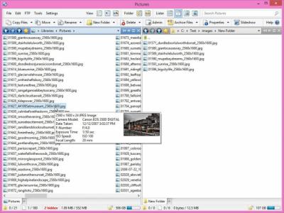 Directory Opus 12.10