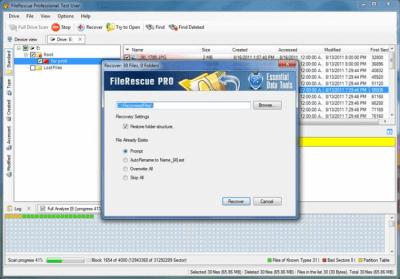 FileRescue Pro 4.16